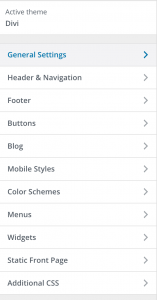 Divi Theme Customizer Option Panel