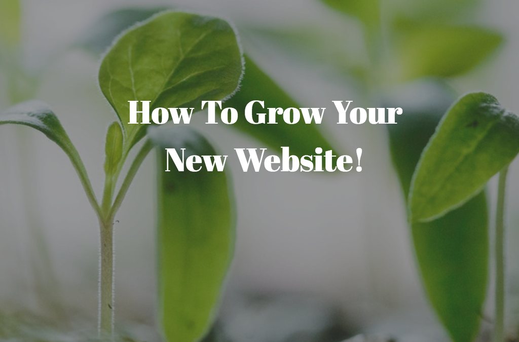 Got a new website? Here are your next steps
